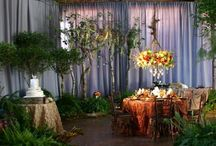 Robyn - Enchanted Forest Wedding / Ideas