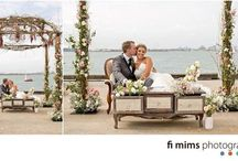 Wedding Arches / Designs