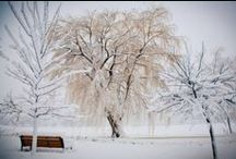 WSU Winter / How to stay warm,  clothing ideas, winter tricks & tips, winter food & drinks
