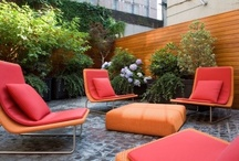 Chill / backyard and outdoor inspiration / by Selket Robins