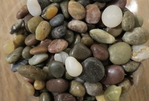 Beach Agates / I am in washington state from Connecticut origionally . I love to collect the agates on the beach here. You can get lost in time as you walk along and search for them. I have a rock tumbler so i can bring there beauty out to it's fullest. / by bobbijo sheets