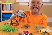 Toy Insects / by Educational Toys Planet