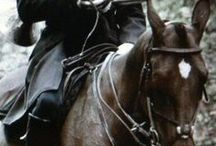 Chasse à courre ou Vènerie, comme vous préférez... Hunting - with hounds of course. / La vènerie aussi a sa place chez Artumès & Co  Hunting with hounds also lives within the walls of Artumès & Co