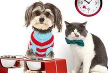 We Love Pets! / Our luxury apartment complex invites you to bring your furry-loved ones homes
