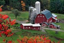* Food North America * / Food, farms and agriculture in North America.