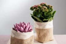 Blooming Awesome Mum / Ideas to celebrate your mom this Mother's Day