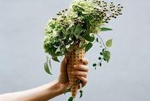 CREATE flower magic