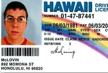 Fake IDs / Learn more about fake IDs and see some of our favorites