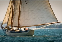 Schooner American Eagle / Sail with Captain John Foss and the crew of the Schooner American Eagle for a truly excellent vacation and a great experience. Step back in time and enjoy a leisurely cruise along the coast of Maine. Sail where the wind blows and leave the world behind.