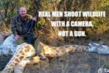 Animals : Mans Cruelty - STOP IT