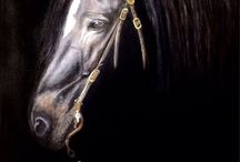 HORSE PAINTINGS / Acrilic and oil painted horses