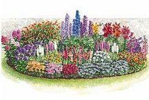 Nature: ✿ Idee gestione esterni, giardini, angoli verdi, etc. ✿