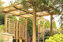 Gardening : Privacy & Outdoor Ideas
