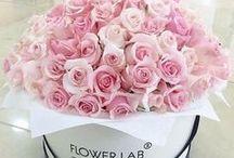 Nature: ✿ Flowers & Roses Bouquets, boxes, etc. - Bouquets, box, mazzi, etc. di rose & fiori ✿