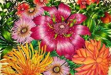 Leila Duly Coloring Books / Floribunda was the  beautiful first coloring book by Leila Duly filled with intricate and beautiful floral designs.    This was followed by her second coloring book,  The Flower Year,  colored inspirational images from these books are below.
