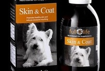 Nutritional Oil Supplements for Dogs