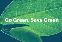 Go Green, Save Green / Everything stays green on this fiscally and environmentally responsible board.  / by Cheapism.com
