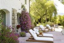Patios, Gardens, and Exteriors / by Ginger Kritz