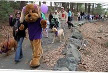 Bark For Life / The American Cancer Society Bark For Life is a fundraising event honoring the life-long contributions of our Canine Caregivers.