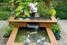 BackYard - ponds/chicks etc / anything that makes a backyard more beautiful... / by Edith Jasser Realtor-Chicago