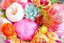 Flowers/arrangements