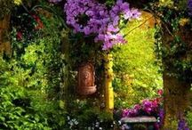 Glorious Gardens no. 2 / by Heather B'