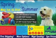 Dog Agility Advertisements / Dog Agility Advertisements: COMING SOON!