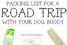 Road Trip: Travel with your dog!
