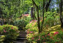 Beautiful Gardens / Beautiful gardens and flower garden landscaping that inspires me!