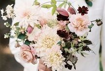 Flowers / Dreamy Flowers and Bouquets