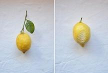 lemon | Zitrone | limone / lemon | Zitrone | limone / by Cettina Vicenzino