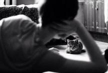 #chicksNcats / + #chicks + #cats @ http://chicksnpets.com