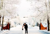 Winter Wedding / Winter inspiration for the bride who wants a cold snow filled dream wedding.