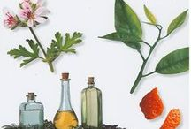 Essential Oils / healing and health with essential oils