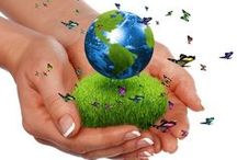 Safe Products / These are companies and/or products that you organic, non-toxic, environmentally-friendly, kid-safe materials