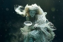 Water Nymphs / by Felicity Robson