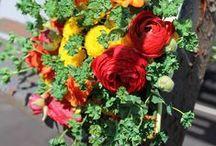 DE Florists, Flowers, Centerpieces
