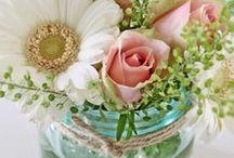Flowers / Lovely flowers