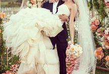 Wedding dreams / Wedding dreams