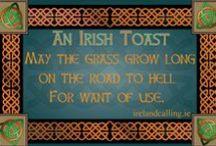 Irish Toasts / Irish toasts for all occasions