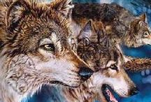 WOLVES (WOLF) / Lupus is Latin for wolf.  A Pattern on the Wolf Face is shape as a butterfly.  Lupus causes a butterfly rash across a Lupie's Face. This is one of the Reason's why the Wolf is a symbol.----ANOTHER IS THAT I LIKE WOLVES!