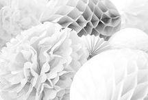 ✭ WHITE ✭