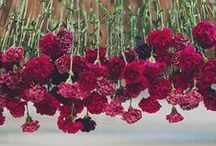 Marsala Wedding / Everything you need to make your marsala colored wedding perfect! Weddings, 2015, Marsala, Pantone Color of the Year, Wedding Trends, Wedding Jewelry, Wedding Accessories, Bridal Fashion, Brides, Bridesmaids, Groom, Bridesmaid Jewelry, Etc.
