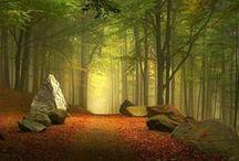 Autumn Landscape™ / Minhas Favoritas