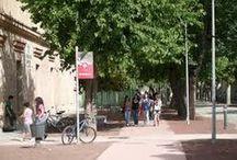 Espacios - Biblioteca Campus de Toledo