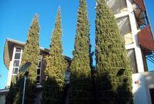 Espacios - Biblioteca Campus de Cuenca / Estos son los espacios de la Biblioteca Universitaria del Campus de Cuenca