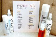 Posh Products (Our Picks)