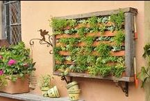 Outdoor Inspiration / All things for outdoors, garden, DIY, dream ideas