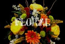 Moore: Floral / Check out the talent of A.C. Moore's floral designers - always available to create a one of a kind creation for you!!