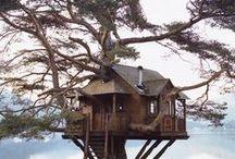 TREE HOUSES !!!!! / by Andrew-Charlotte Alvarado